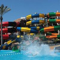 Color, agua y diversión