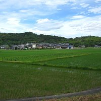 Kibi plain