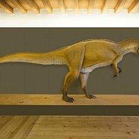 La ricostruzione del dinosauro