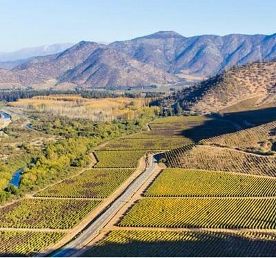 Bodegas y Viñedos. Maipo Valley Wine Tours