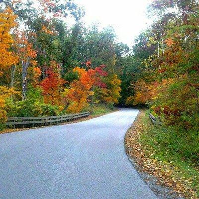 Fall foilage at Mallard Lake and winding road.