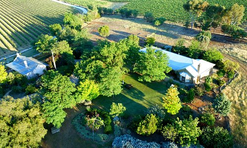 Our home, vineyard and cottage from a hot air balloon!