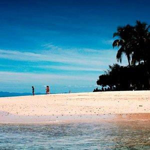 Isla Granito de Oro, Coiba