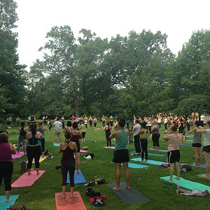 Yoga in the Park Summer 2015