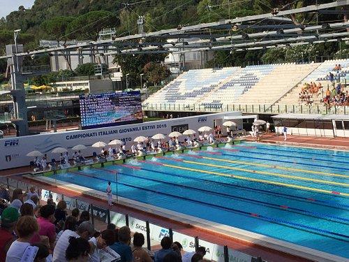 Campionati giovanili di nuoto estivi 2015