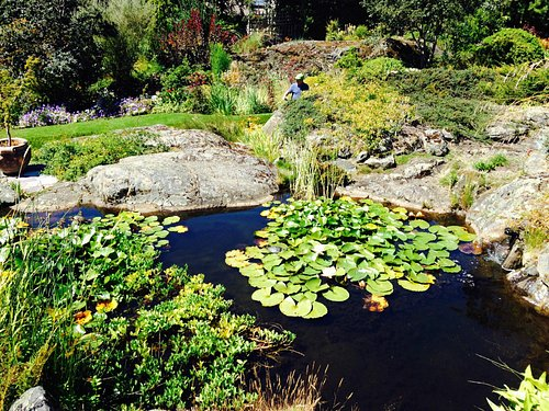 One of three ponds