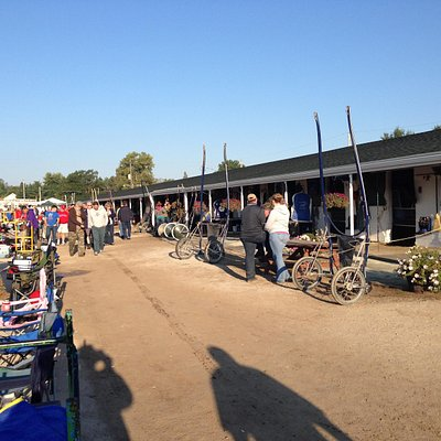 Harness racing barns just off the track