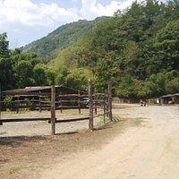 12 agosto 2015 un'ora a cavallo