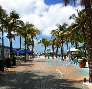 Fort Myers Beach  Florida Times Square