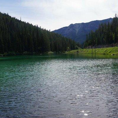 Beautiful Olive Lake