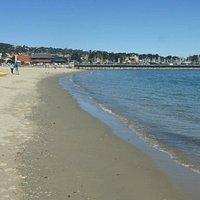 Monterey State Beach./Del Monte Beach