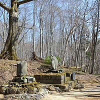 大町桂月の墓所です 雪解け後、新緑前なので空が見えますが、夏場は鬱蒼とした森の中です