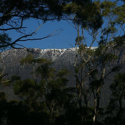 Snow on Mt Wellington from the Summit Loop.
