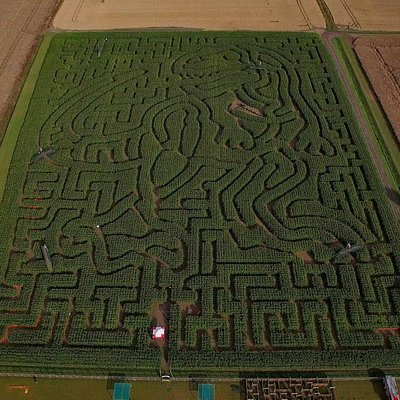 2015 Aerial of the T Rex Maze