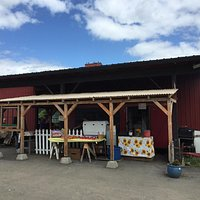 Nice little spot in the fall. Roasted corn, various sausages, cheese burgers. Cash or check only