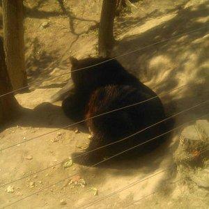 Zoo Tabor