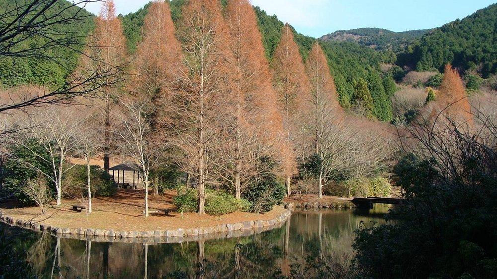 12月の風景