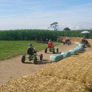 Easingwold Maize Maze