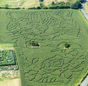 Aerial view of 2015 Maize Maze