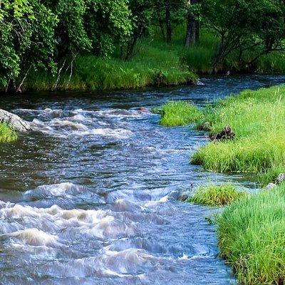Grace Coolidge Creek