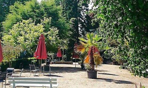 Café und Kuchen zwischen Palmen und Blumenbeeten