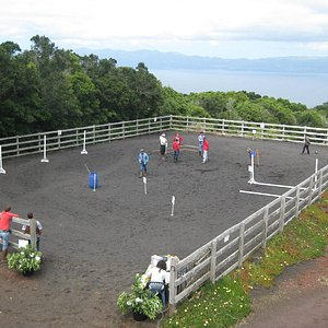 Horse backriding competition