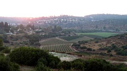The view from our winery - over looking the Ella valley
