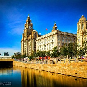 The Royal Liver Building. The icon of Liverpool.  #adamtasimages