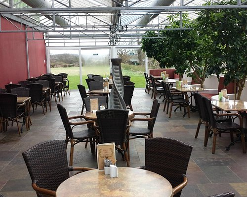 Citrus Cafe Seating Area