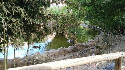 Parque Zoologico Prudencio Navarro