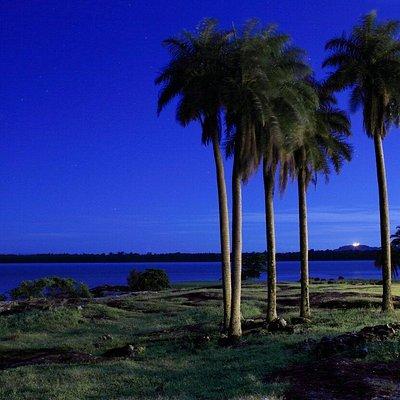 Kourou River
