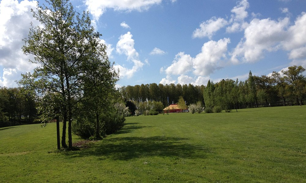 terrain swin golf