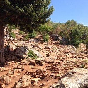 Lots of sharp stones