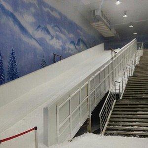 VGP Snow Kingdom