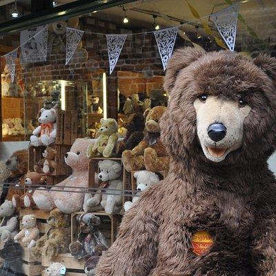 Welcome to The Bear Garden