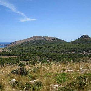 Cala Mesquida, Cap des Freu, Talaia de Son Jaumell (273m), and Puig de s'Aguila (231m) from Puig