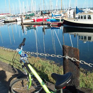 Very near the Boathaven (Port Townsend) trailhead are great marina views.