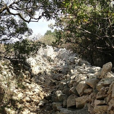 Rocky way to hill