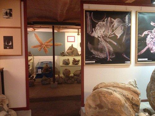 The museum interior.