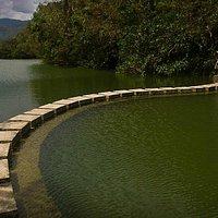 踏腳石與生態池