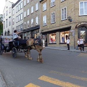 Calèches dans le vieux Québec ,avec visites guidées