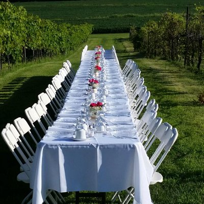 "Table setting at ""Dinner in the Vines"""