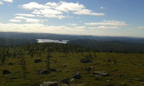 View from Otsamo Fell