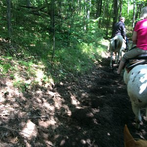 On the trails