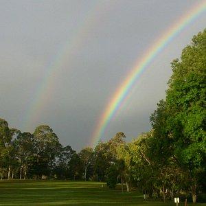 Cooroy Golf Club