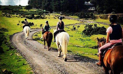 Caradon Hill Trekking and Equestrian Centre