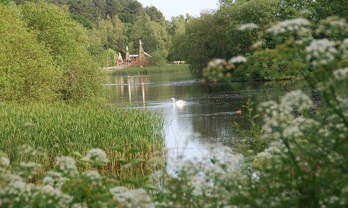 Moors Valley Country Park - Moors Lake