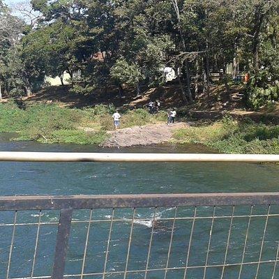Zoológico a beira do Rio Pardo