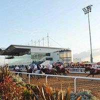 Horse racing at Dundalk Stadium