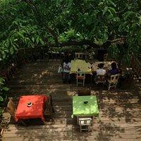 organik ev garden